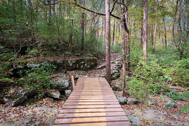 Legacy Loop Hiking Trail